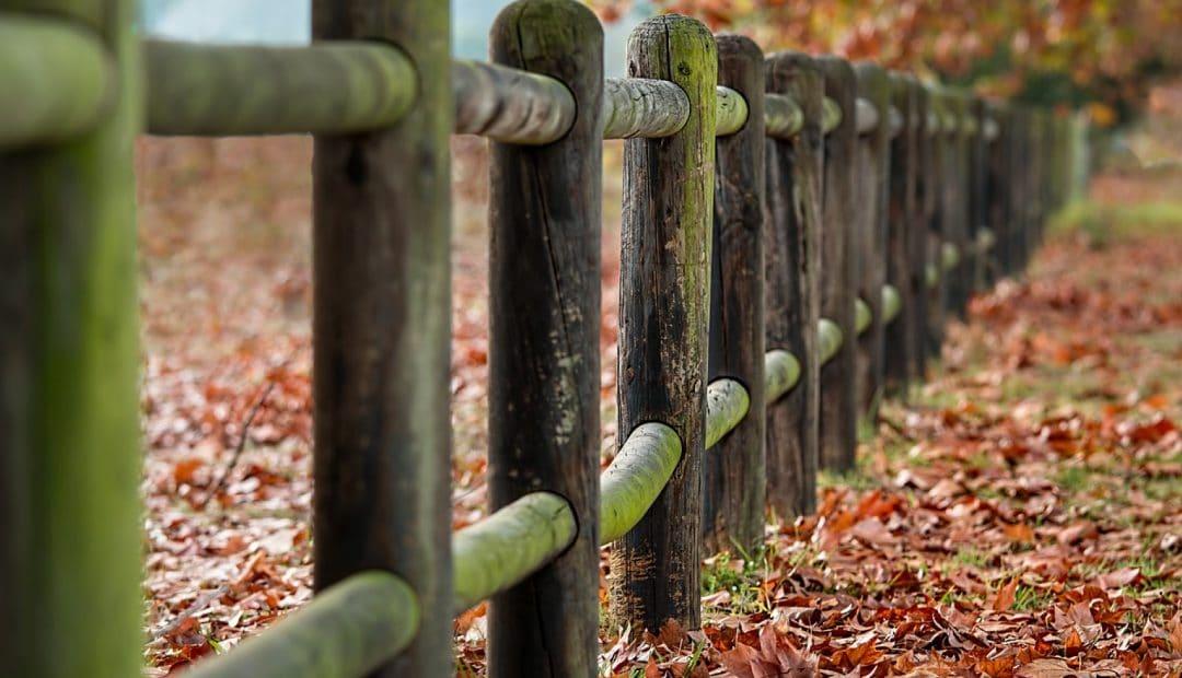 Quel budget prévoir pour la pose de clôture ?