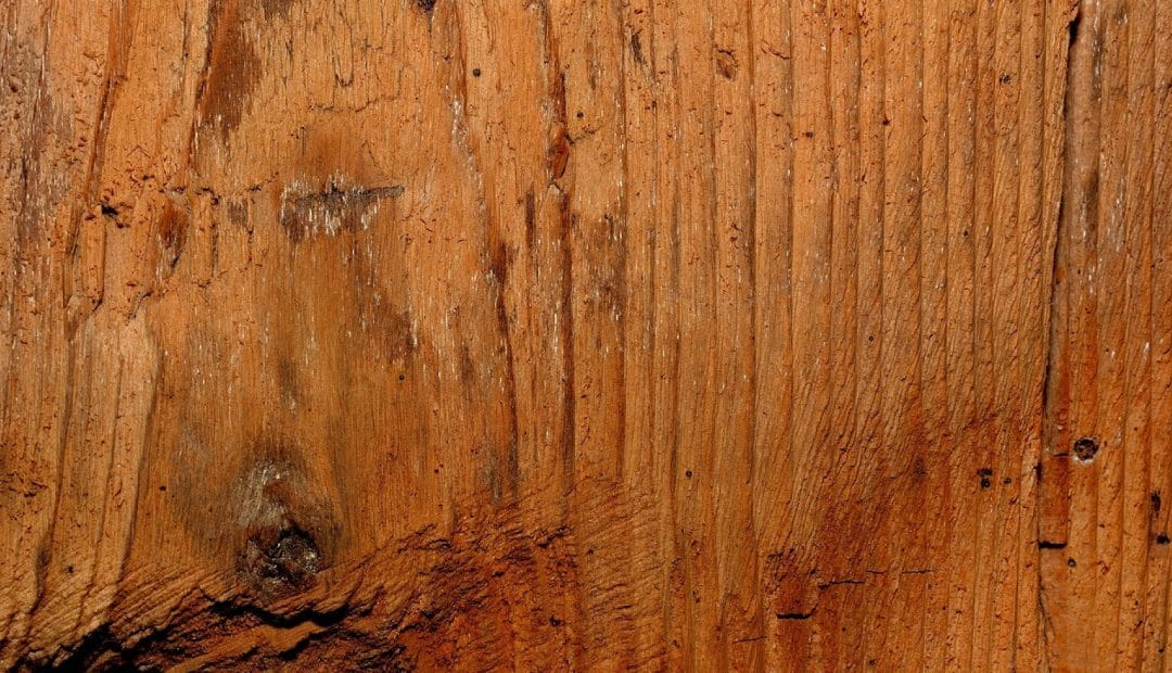 Choisissez un lit en bois massif pour votre enfant